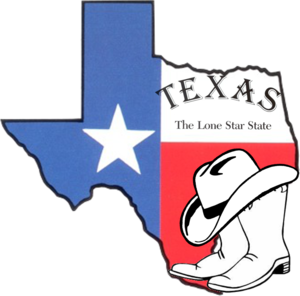 Don't Mess With Texas Secessionists