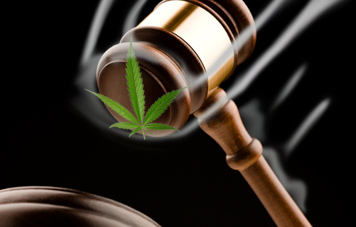 "Judge rejects bid to block Washington state ""stoned driving"" rules"