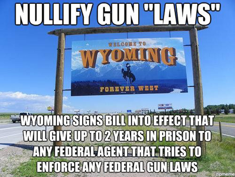 wyoming gun laws